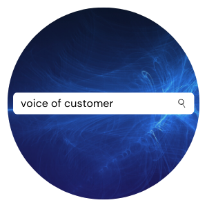 blogs about voice of customer